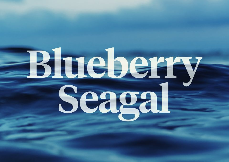 A photo of the ocean with the words Blueberry Seagal